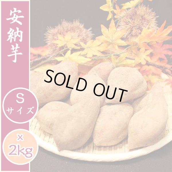 画像1: 【種子島産】安納芋 [Sサイズ] 産地直送【2kg入り】 (1)