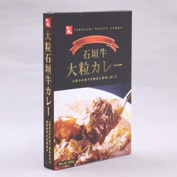 画像1: 大粒石垣牛カレー (1)