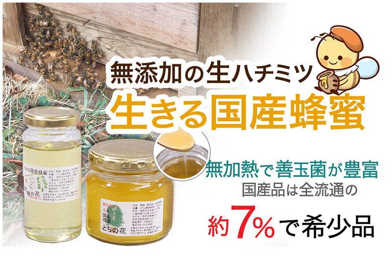 生きる国産蜂蜜
