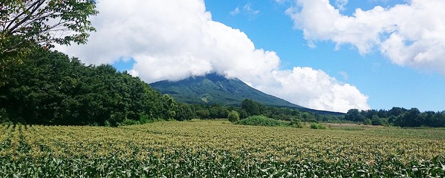 岩木山と嶽きみ