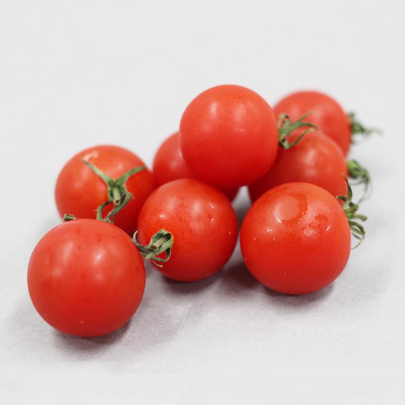 めんこいトマトイメージ①
