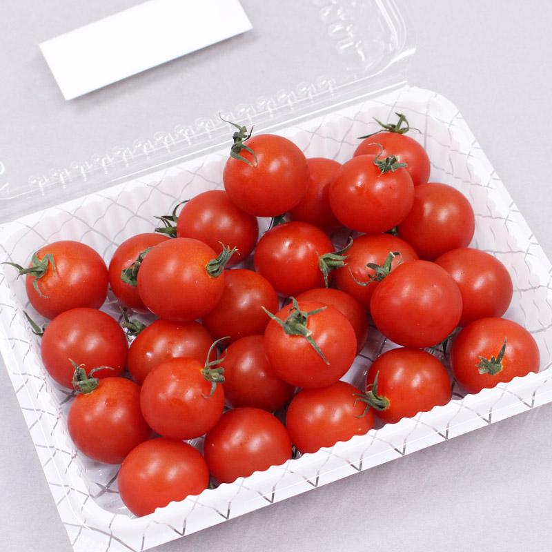 めんこいトマトイメージ③