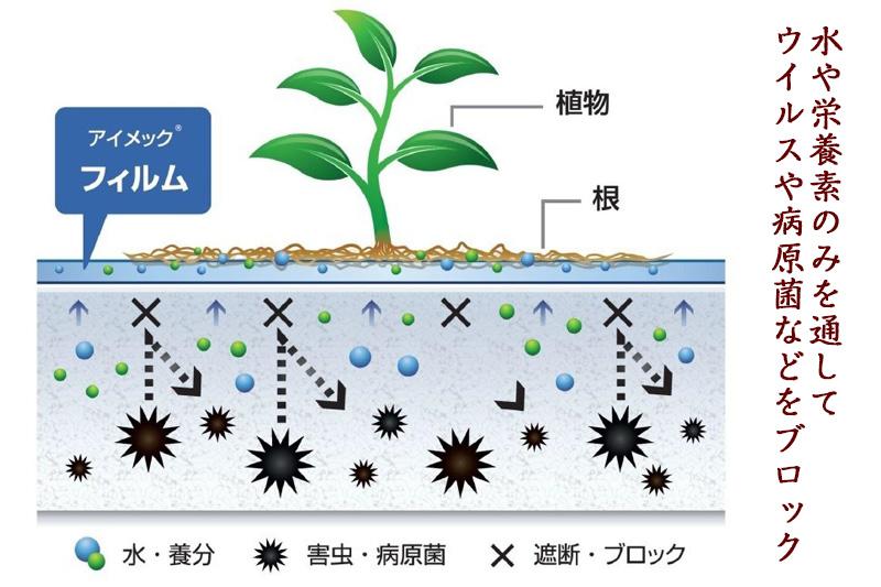 アイメック農法3