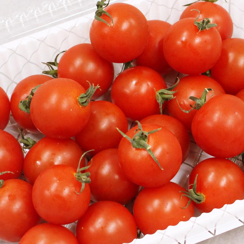 めんこいトマトイメージ画像